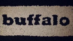 change in buffalo